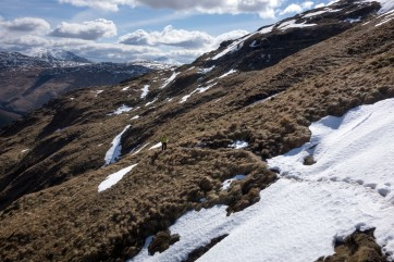 Beinn Bhuidhe, still holding quite a bit of snow