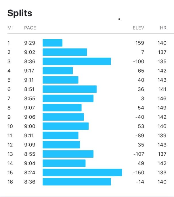 Strava stats - 16 miles