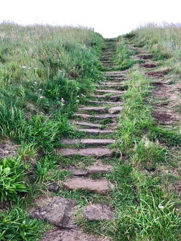 Good paths with steps on ascent and descent: Fife Coastal Path
