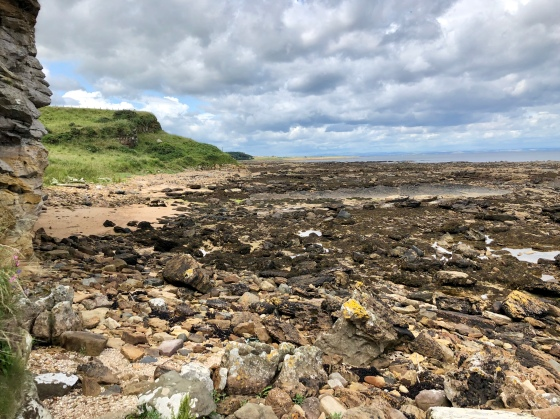 Running the shore: Fife Coastal Path (Crail to Kingsbarns)