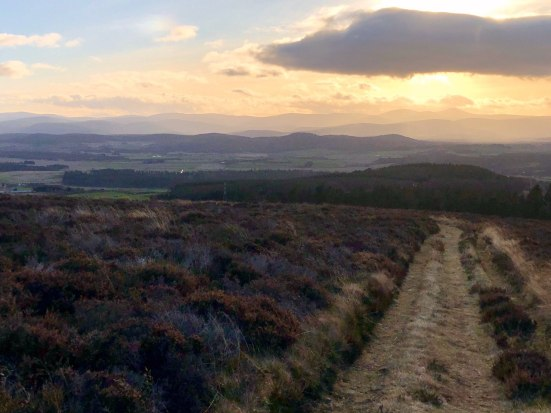 Looking towards the Cairngorms from Pressendye