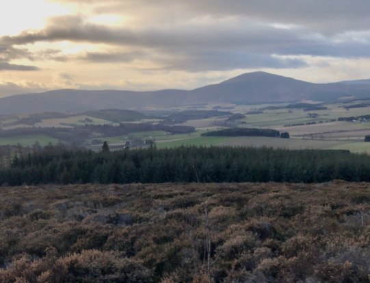 Views from Pressendye, Tarland